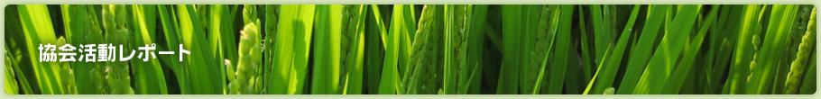 長野県松本市 腰痛バイバイ・機能改善体操講座 2015年3月26日(木)