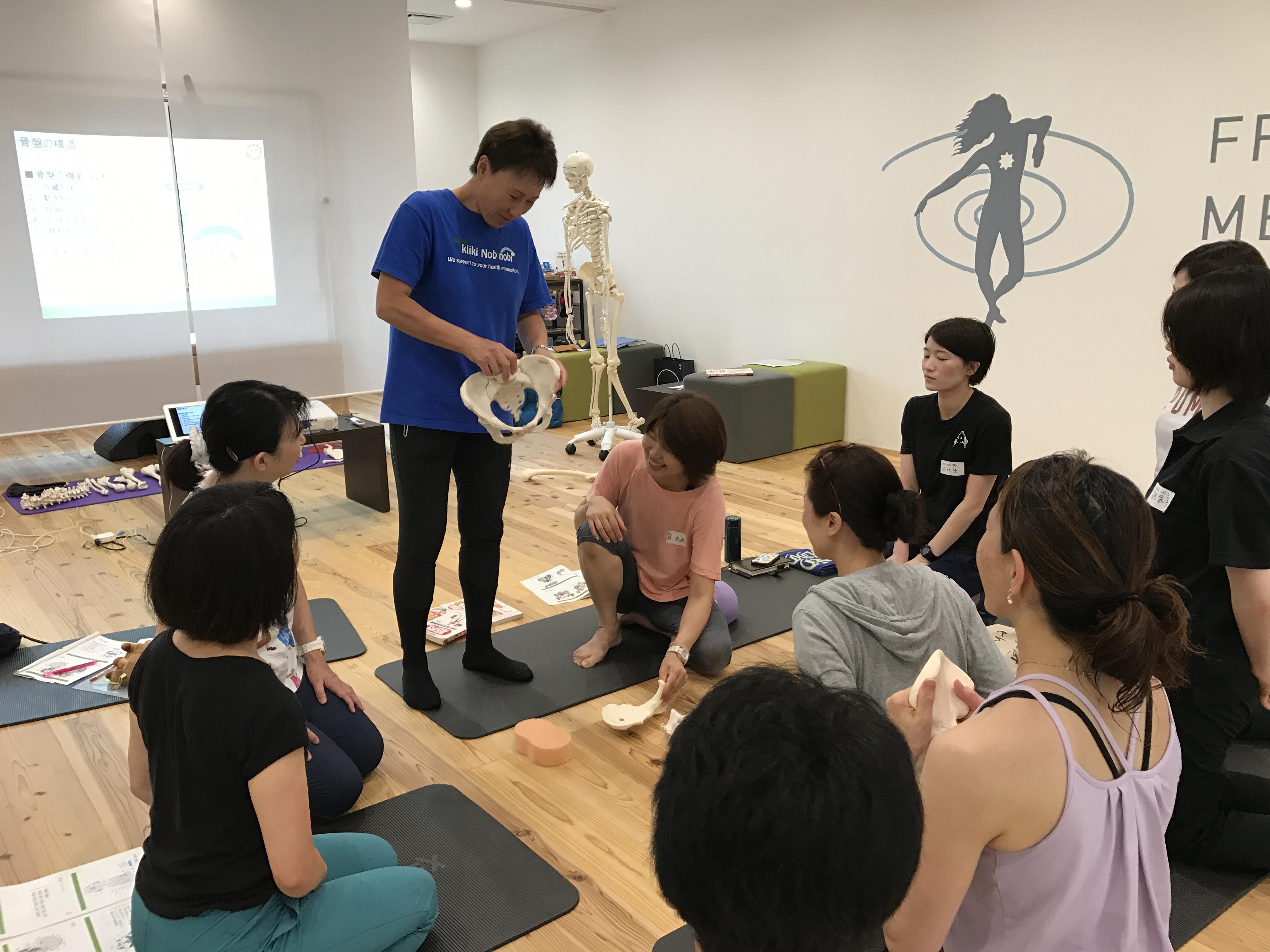 機能改善のための解剖学コース 体幹編(腰編)